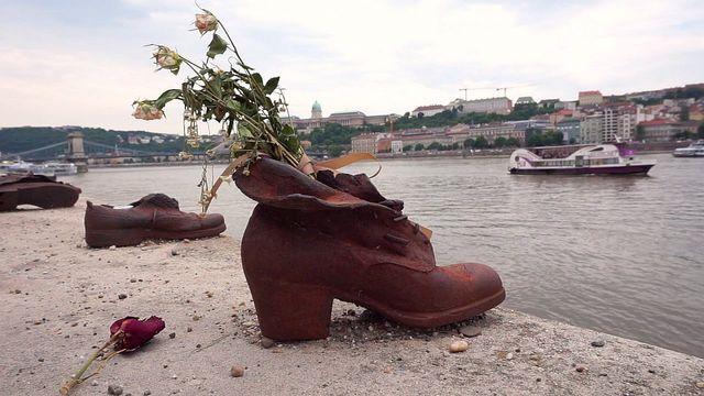 多瑙河鐵鞋