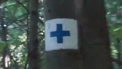 維謝格拉德-索羅門塔Solomon Tower of Visegrad -「白底藍十字」油漆指標