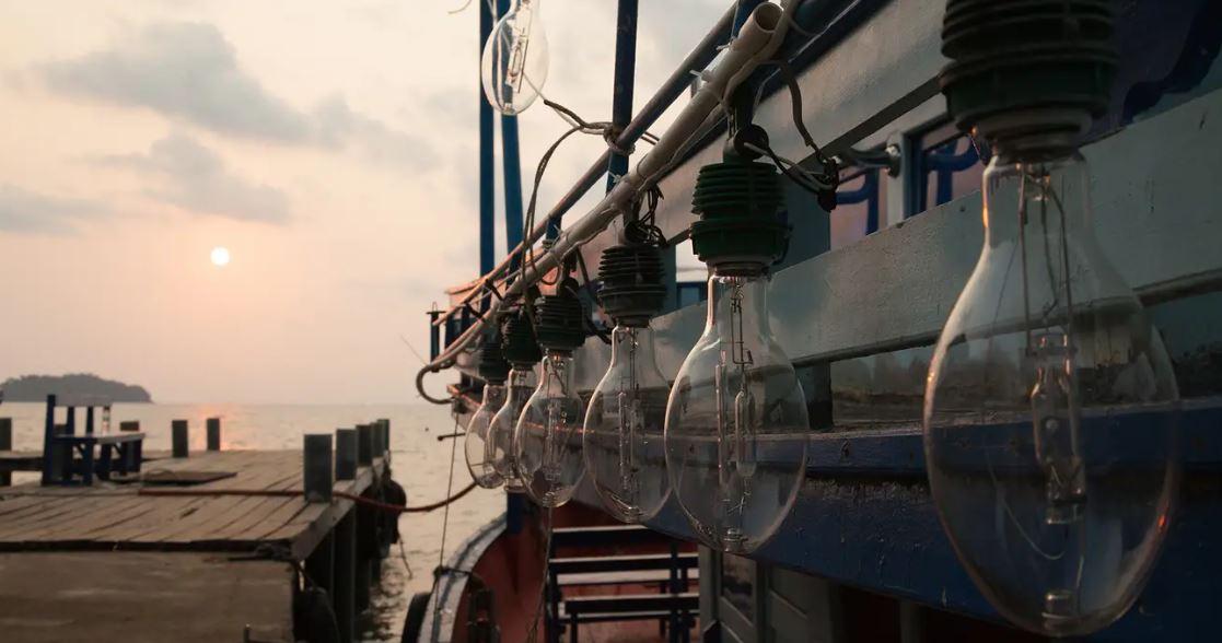 澎湖夜釣小管體驗