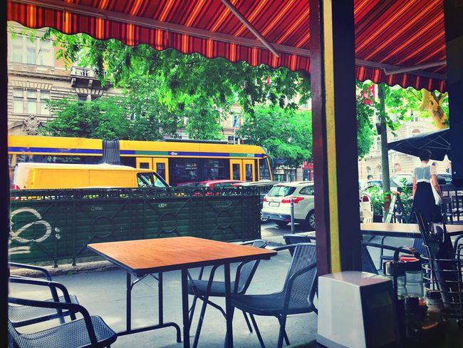匈牙利打工度假:布達佩斯中式餐館,交通便利位在Oktogon捷運站、輕軌4/6線附近,好吃夠味。