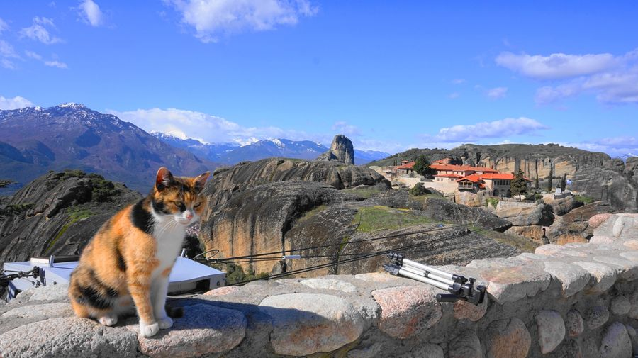 梅特歐拉Meteora修道院與貓咪
