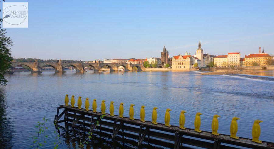 布拉格Prague必去景點-康帕島上的黃色企鵝裝置藝術。