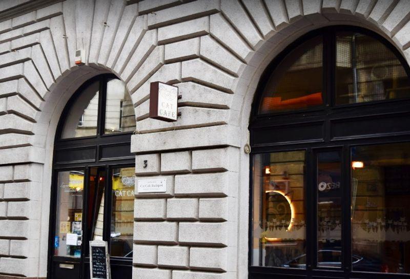 Cat Cafe Budapest 布達佩斯貓咪咖啡館大門口
