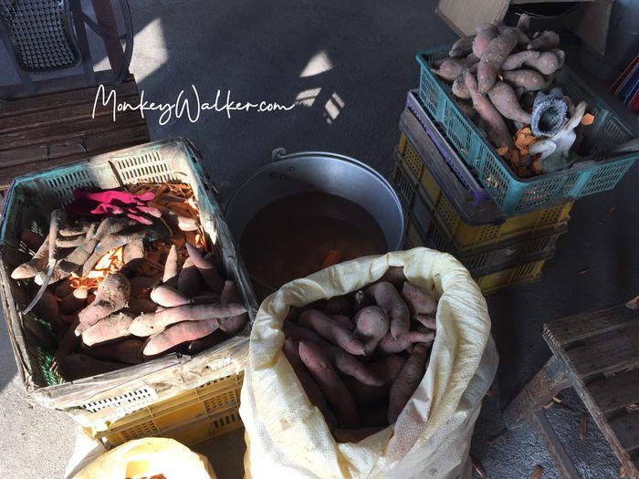 造訪林內神社後,附近好吃的蜜番薯。