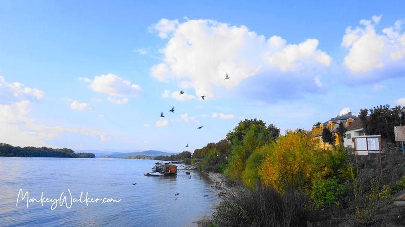 瓦茨的多瑙河畔。