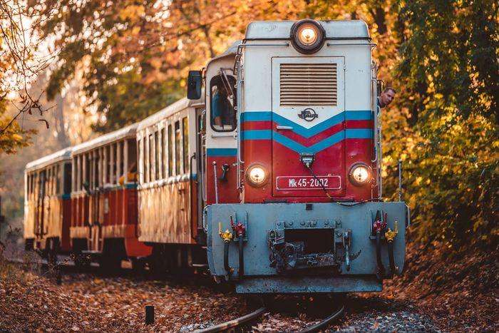 布達佩斯很特別的兒童鐵路(Children's Railway)。